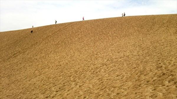 砂丘 馬の背