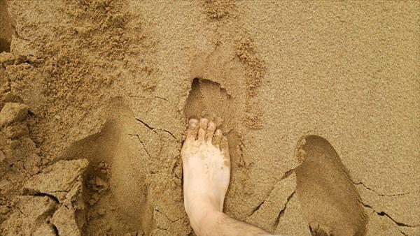 砂丘で裸足2