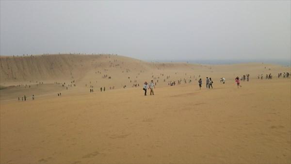 ゴールデンウィークの砂丘