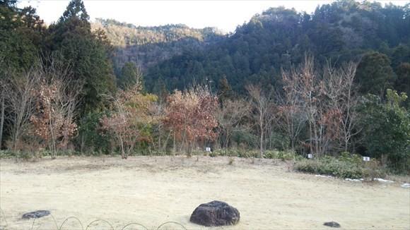 s-seotoyu031