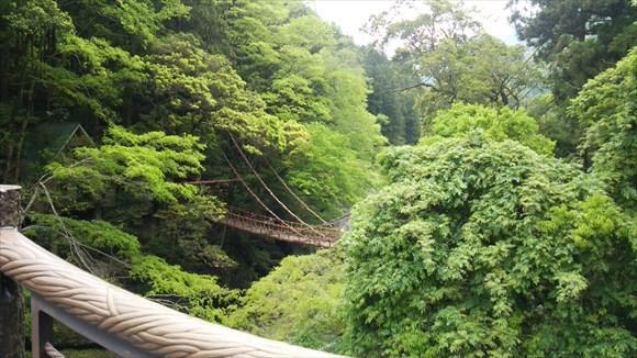 祖谷のかずら橋が見えた!