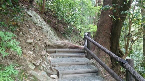 祖谷のかずら橋に向かう途中の階段