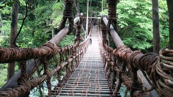 祖谷のかずら橋 振り返ると