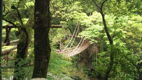 祖谷のかずら橋 全景