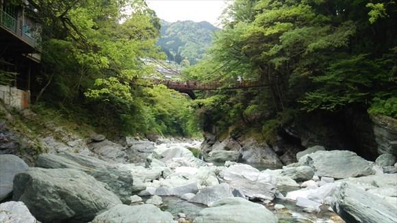 河原から見るかずら橋