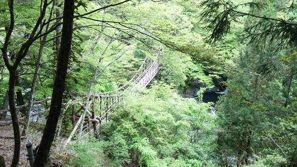 奥祖谷の二重かずら橋 男橋