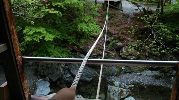 ロープをたぐり寄せる 野猿