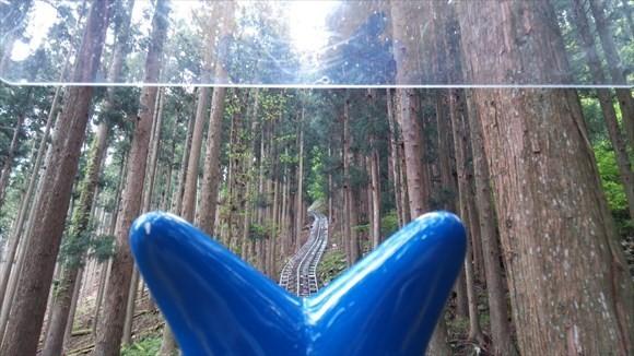 奥祖谷観光周遊モノレール 森のなかを走る!