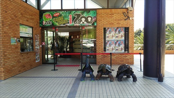 伊豆にある爬虫類の楽園「IZOO」に行ってきた!爬虫類に興味がなくても楽しめるの?