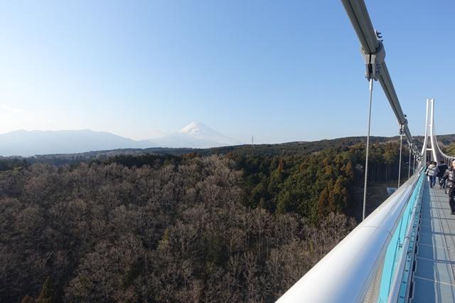 三島スカイウォークからの眺め 富士山