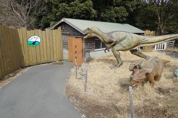 恐竜が棲む森